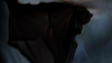 underwindow 1