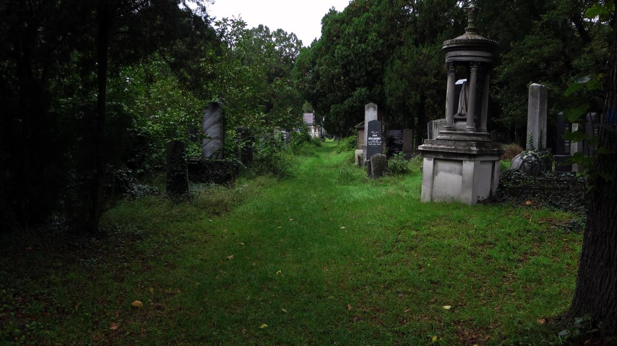 wien jewish cemetery path