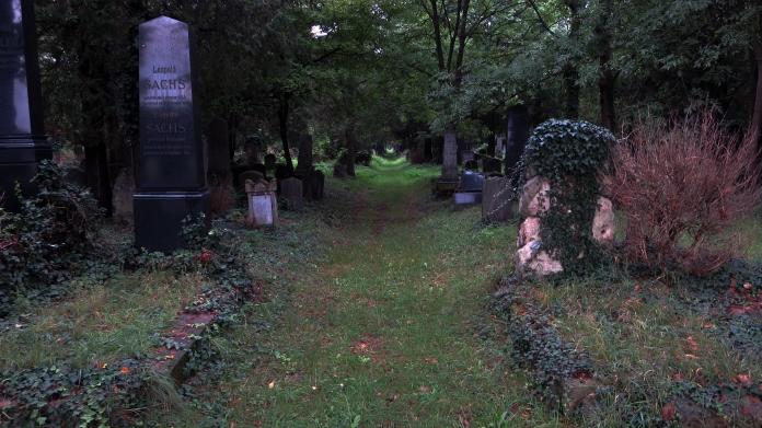 wien jewish cemetery walkway