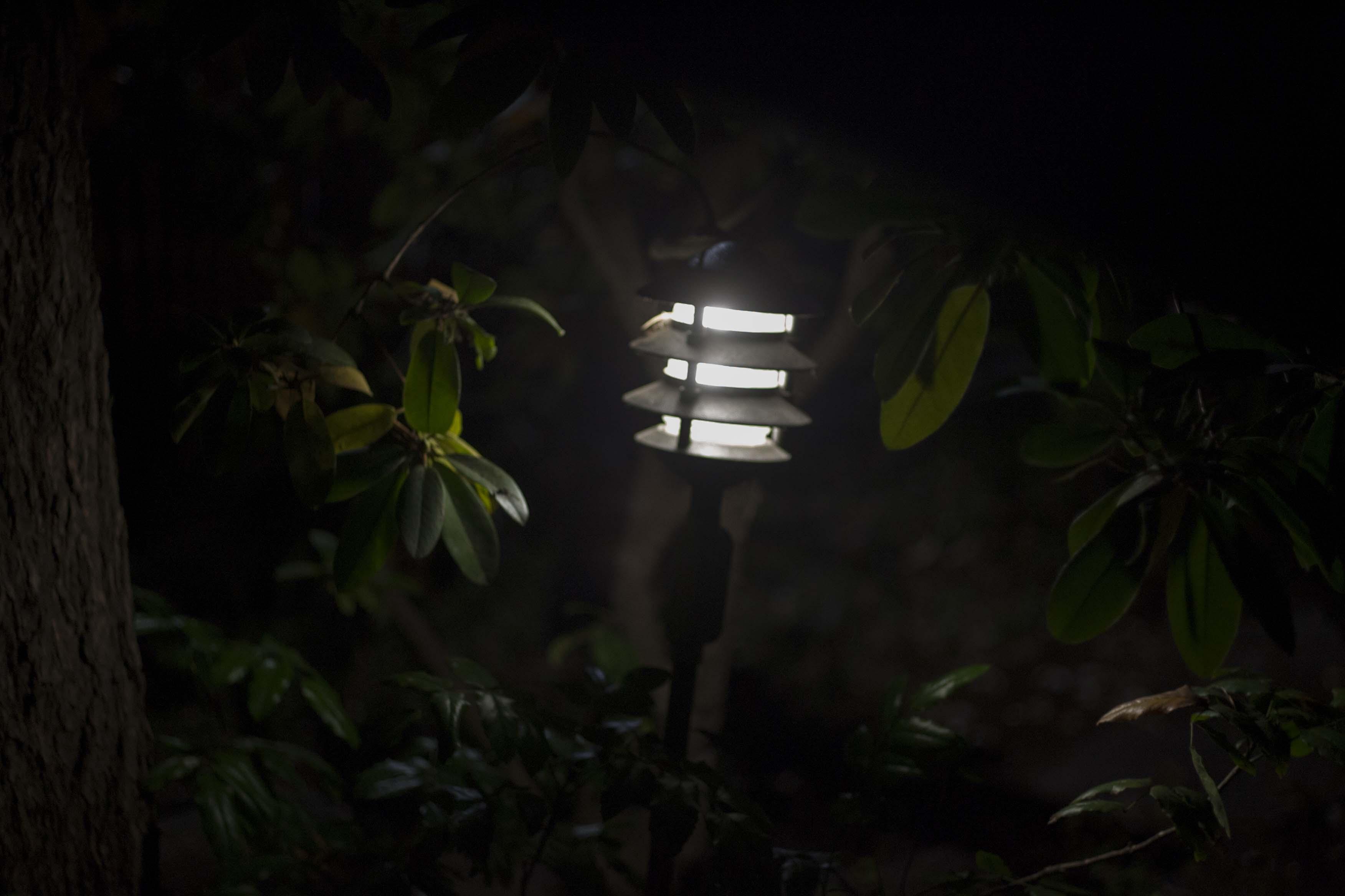 night light 1